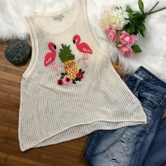 American Eagle Outfitters Tops - American Eagle Women's Flamingo Knit Tank Top